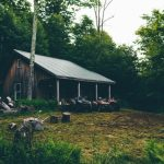 Cabin insurance in Sevierville